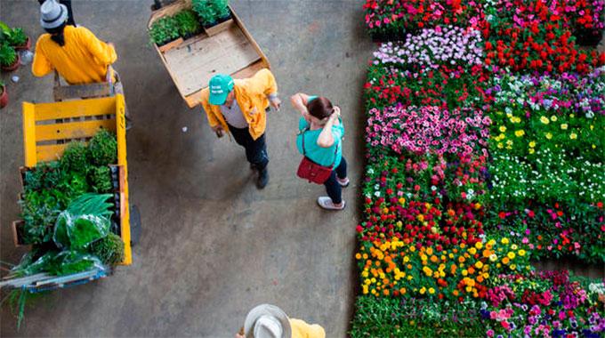 Flores Ceagesp Feira De Flores Horário Preços